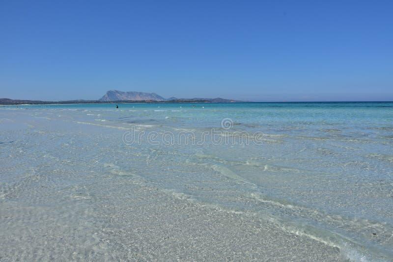 Пляж Cinta Ла в San Teodoro, Сардинии стоковое фото rf