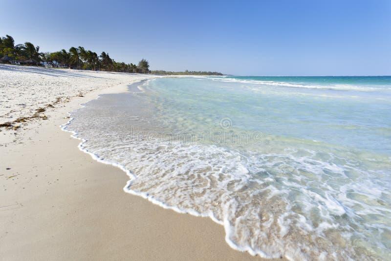 Пляж Diani, Кения стоковые фотографии rf