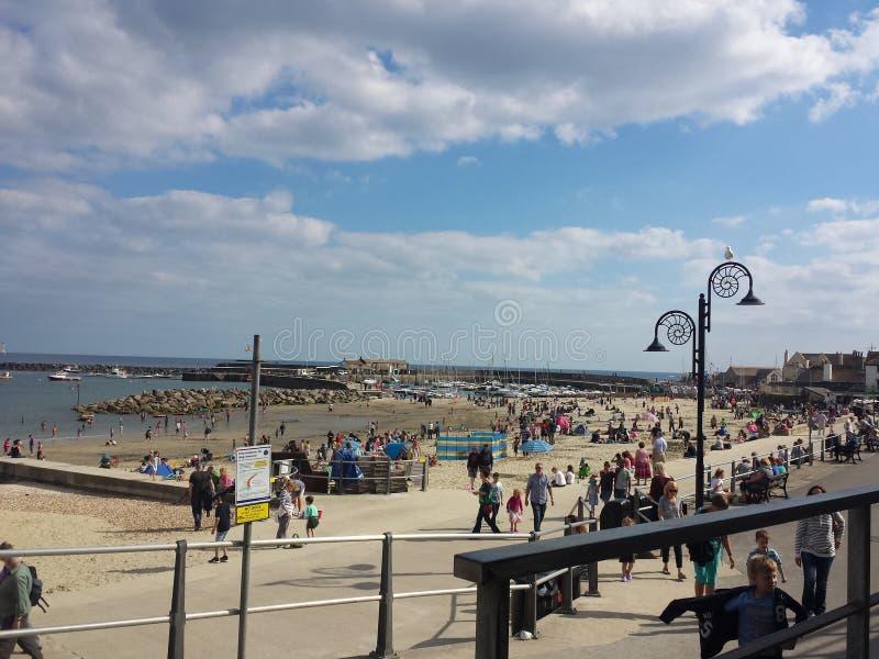 Пляж Lyme Regis стоковые изображения rf