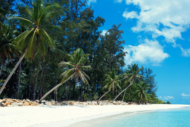 Пляж Malibu на острове Phangan Koh, Таиланде стоковые изображения