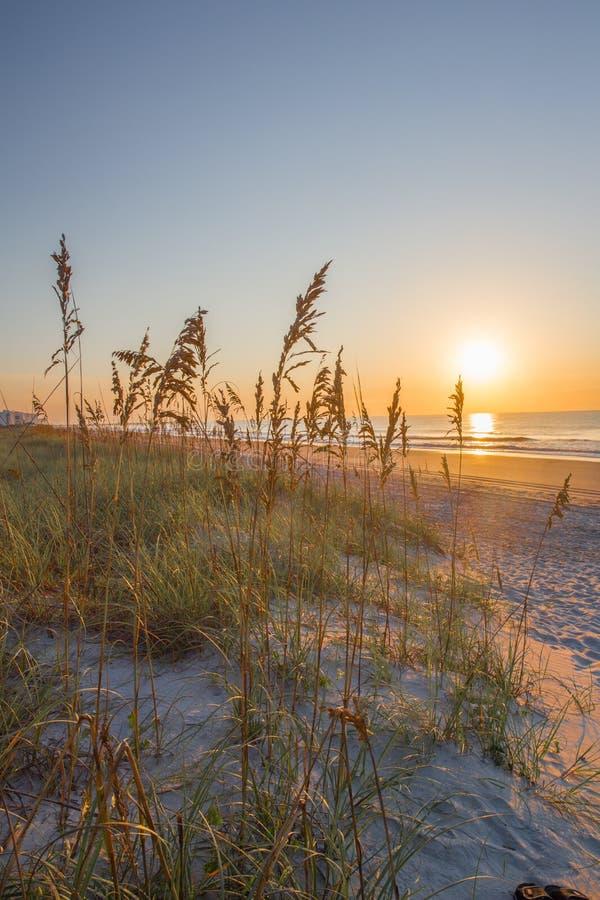 Пляж Myrtle стоковые изображения rf