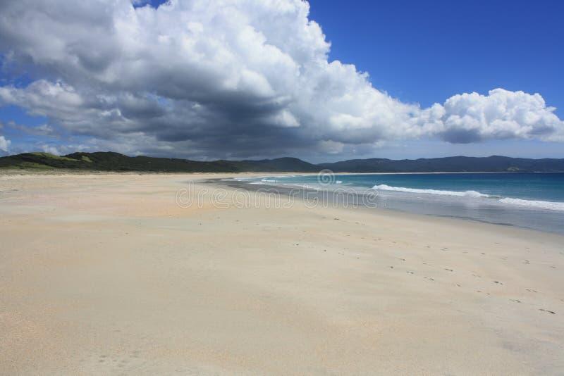 Пляж Northland стоковые фото