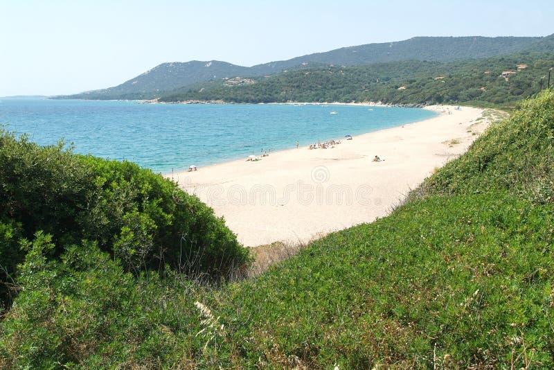 Пляж Olmeto на острове Корсики стоковое фото rf