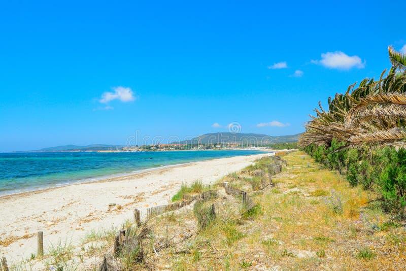 Пляж Pia Марии на ясный летний день стоковые фотографии rf