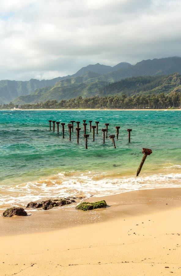 Пляж Pounders стоковые фото