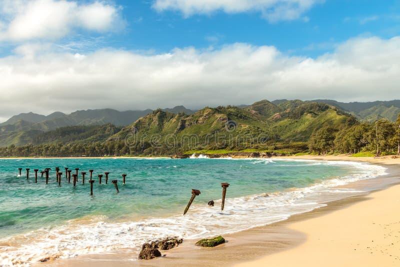 Пляж Pounders стоковая фотография