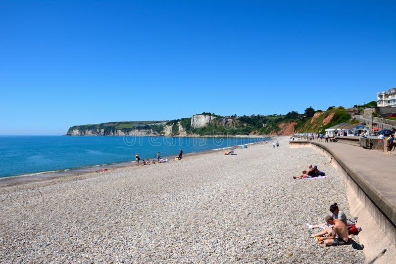 Пляж Seaton стоковые изображения
