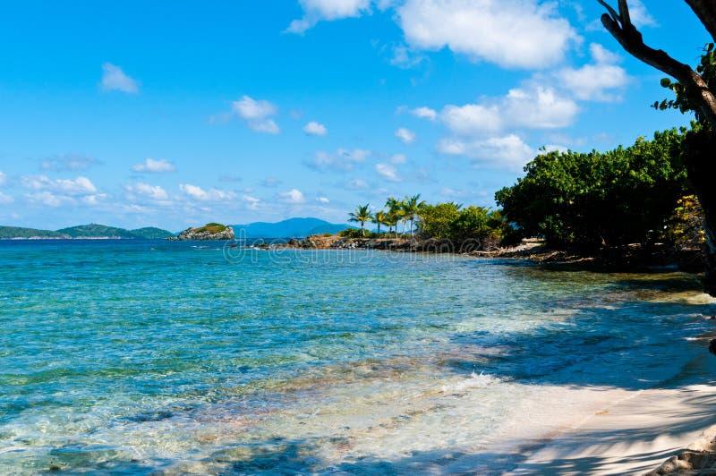 Пляж St. Thomas сапфира, US-VI стоковые фотографии rf