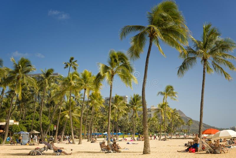 Пляж Waikki, Гонолулу, Гаваи стоковое фото