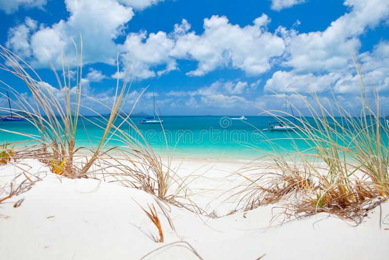 Пляж Whitehaven в Whitsundays стоковая фотография rf