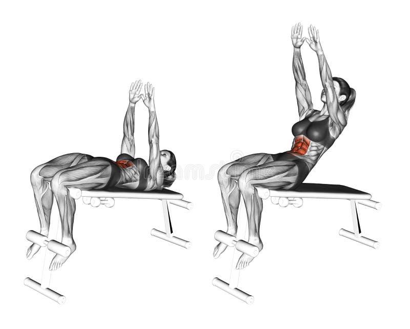 Работать фитнеса Достигаемость Ab спада женщина бесплатная иллюстрация