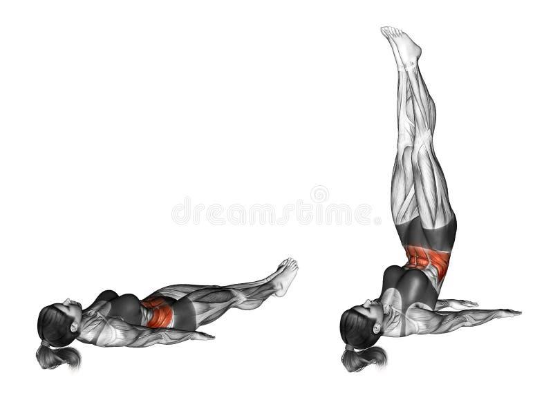 Работать фитнеса дн вверх женщина иллюстрация штока