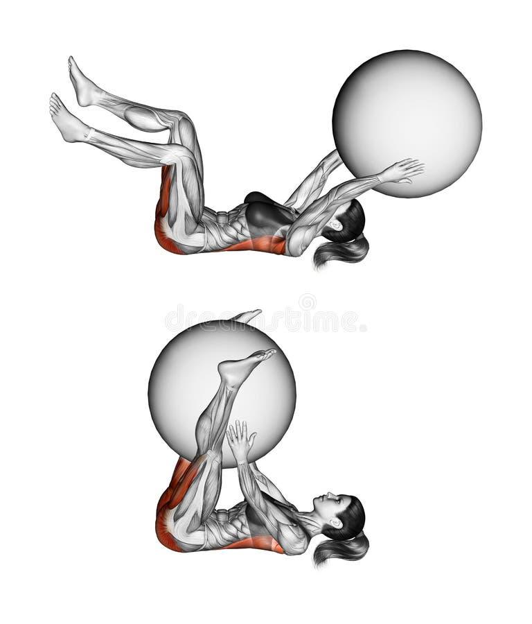 Работать Fitball Уменьшение рук и ног в треугольнике с fitball женщина