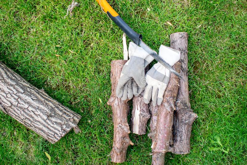 Работающ в саде, mann пиля чурбан древесины стоковая фотография rf