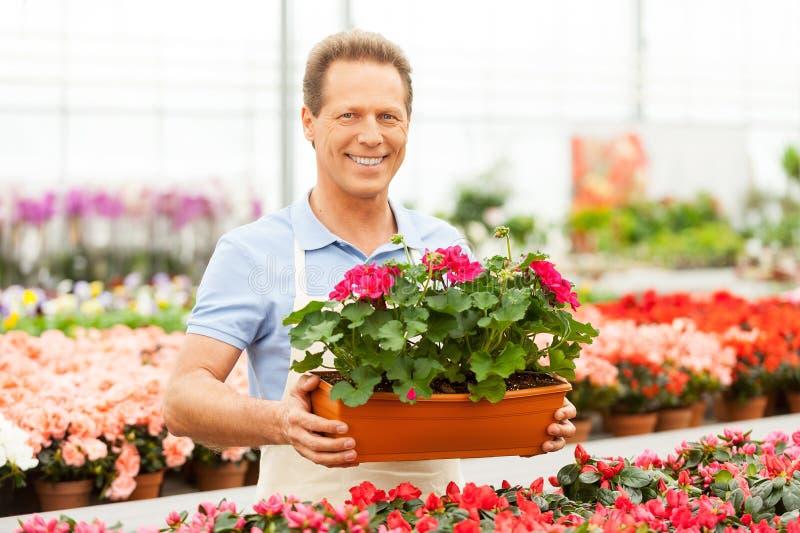 Download Работа с цветками стоковое изображение. изображение насчитывающей aiders - 40586291