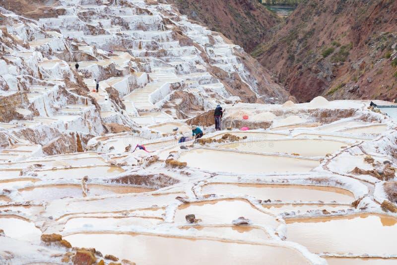 Работники в тазах соли на перуанских Андах стоковое фото rf