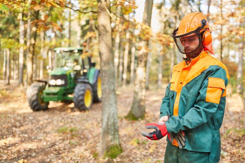Работники леса в защитном оборудовании для охраны труда стоковые фотографии rf