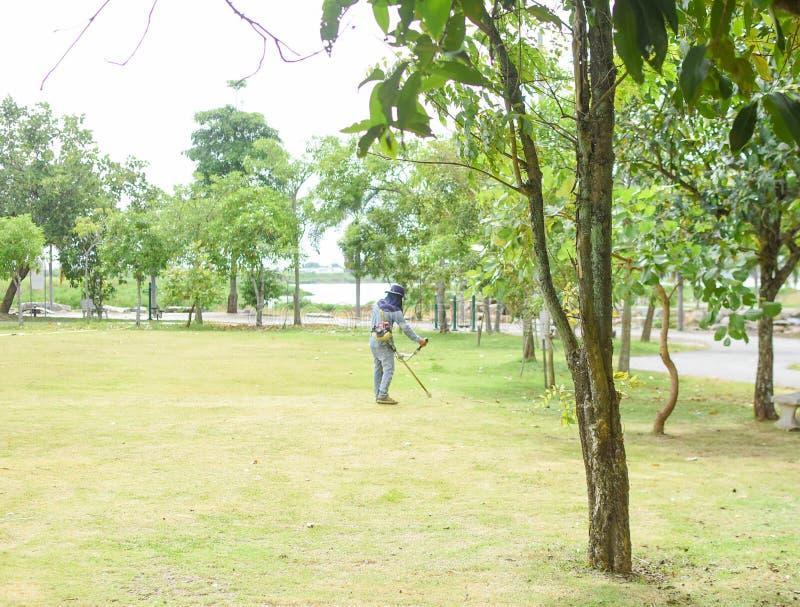 Работники режут поле в саде стоковое изображение rf