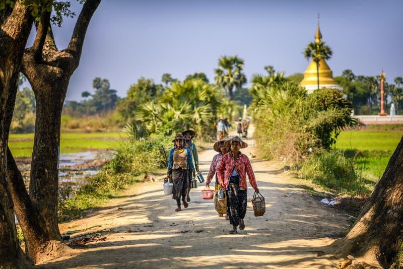 Работники фермера в традиционных соломенных шляпах в Мандалае, Мьянме стоковая фотография rf