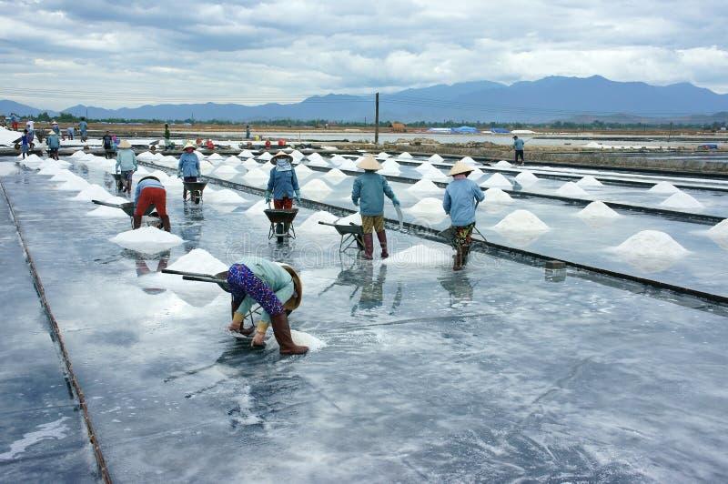 Работник Азии, соленое болото, работая стоковые фото