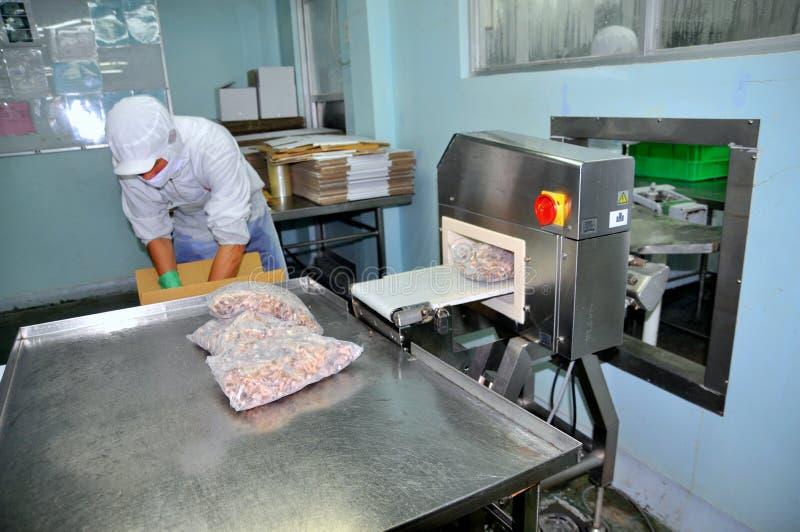 Работник проверяет для спрятанного металла в законченном - продукты в фабрике морепродуктов в Хошимине стоковая фотография rf