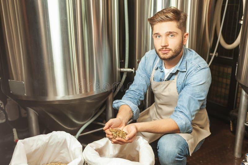 Работник проверяя зерна хмеля в сумках стоковое фото
