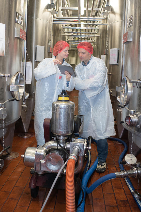 Работник Hairnet общаясь с несется внутренняя фабрика winemaker стоковая фотография
