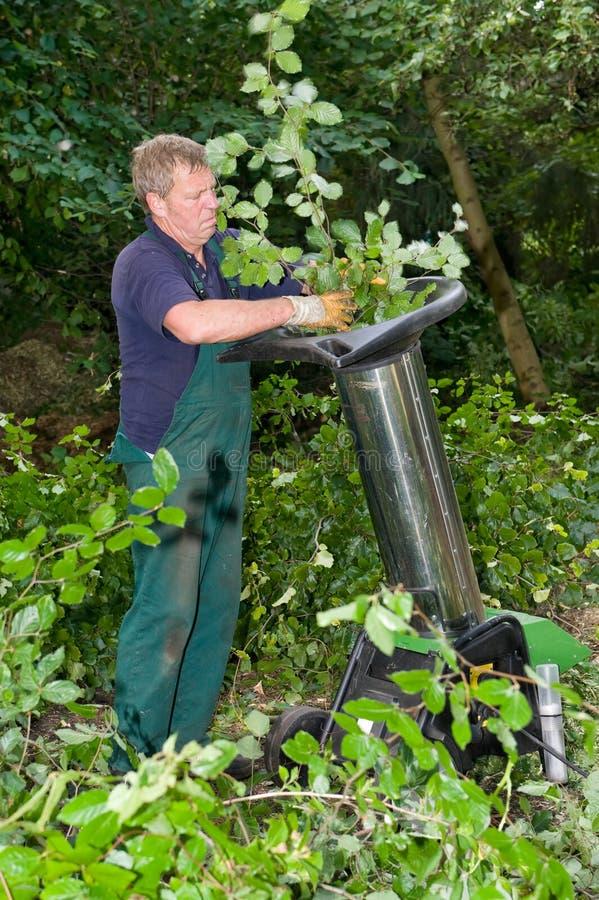работник schredder стоковое фото rf