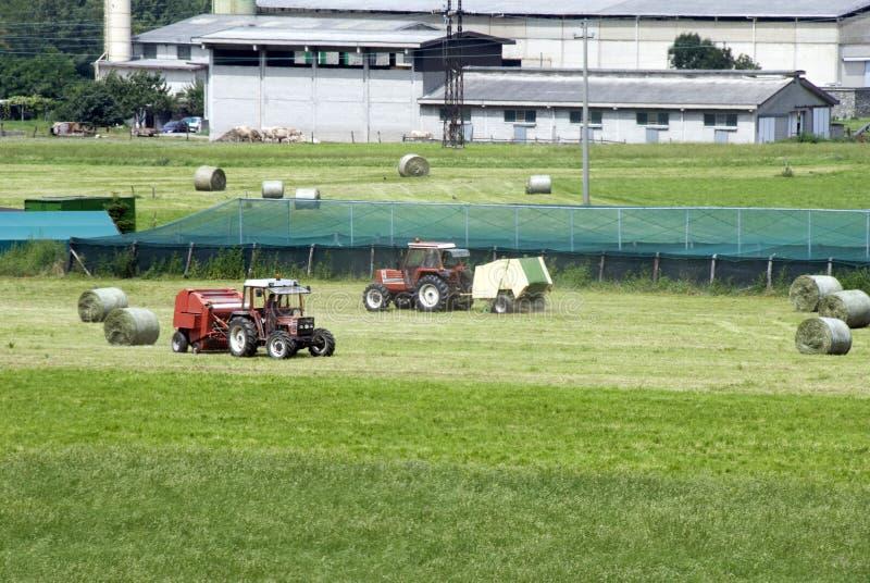 работы земледелия стоковая фотография rf