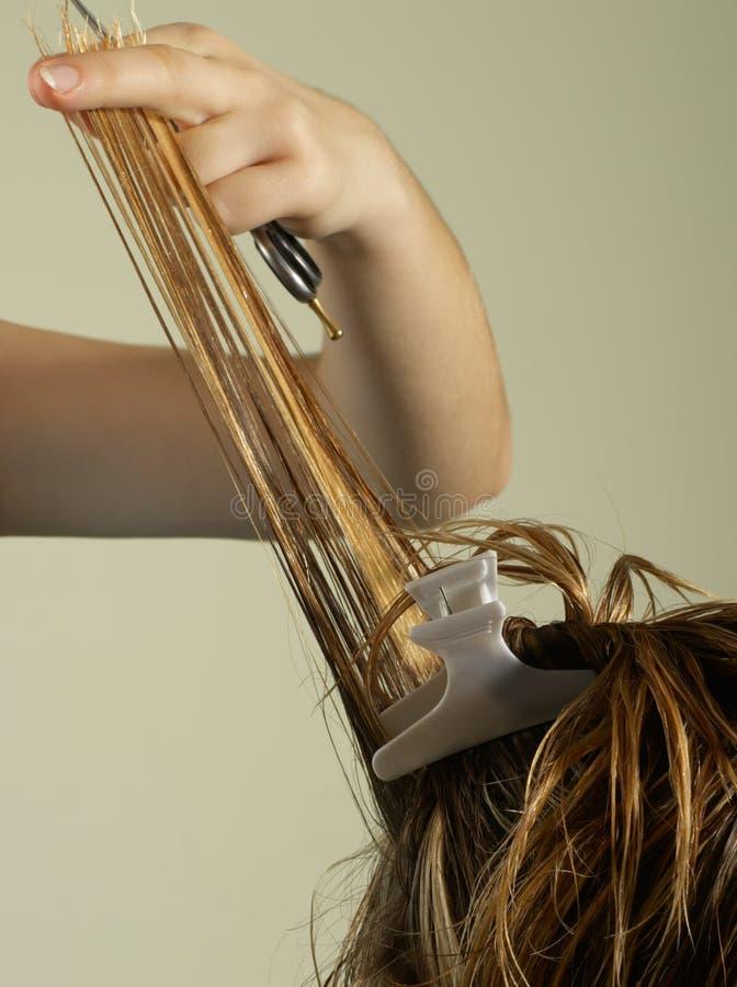 работы hairstylist стоковые изображения