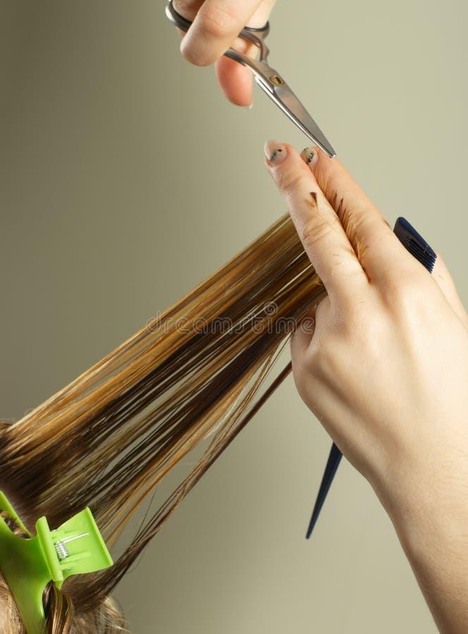 работы hairstylist стоковое изображение rf