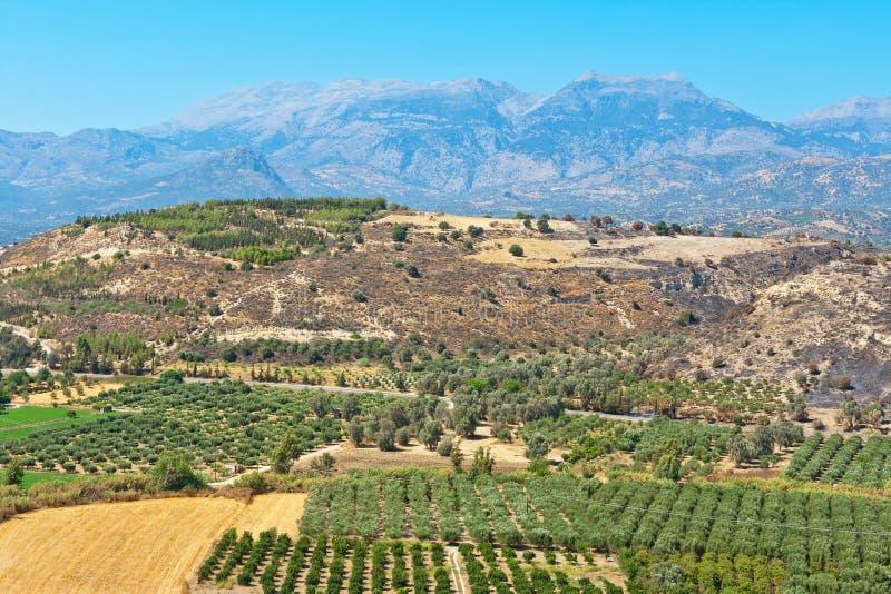 Равнина Messara Крит Греция стоковые фото