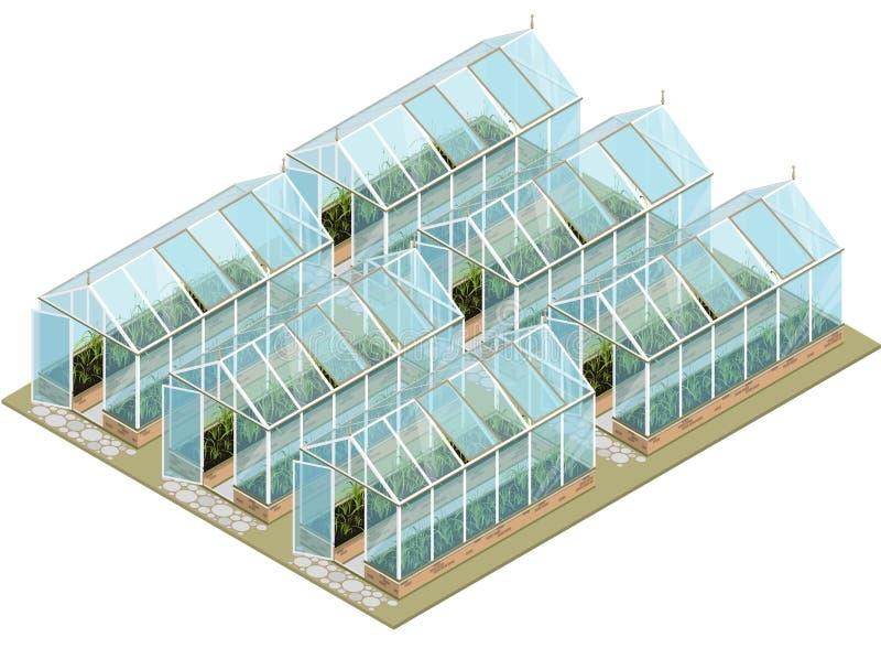 Равновеликая ферма парника с стеклянными стенами и учреждениями иллюстрация штока