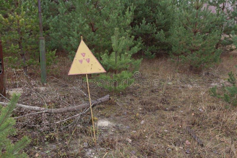 Радиация подписывает внутри лес около электростанции в зоне отчуждения Чернобыль, Украине стоковое фото