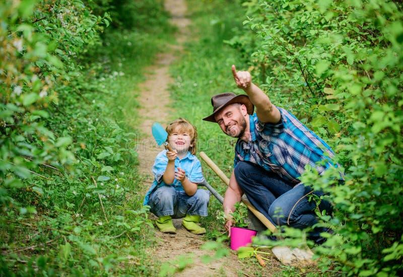 Радостные выходные отец и сын в ковбойской шляпе на ранчо r небольшой отец помощи ребенка мальчика в обрабатывать землю hoen, бак стоковое фото rf