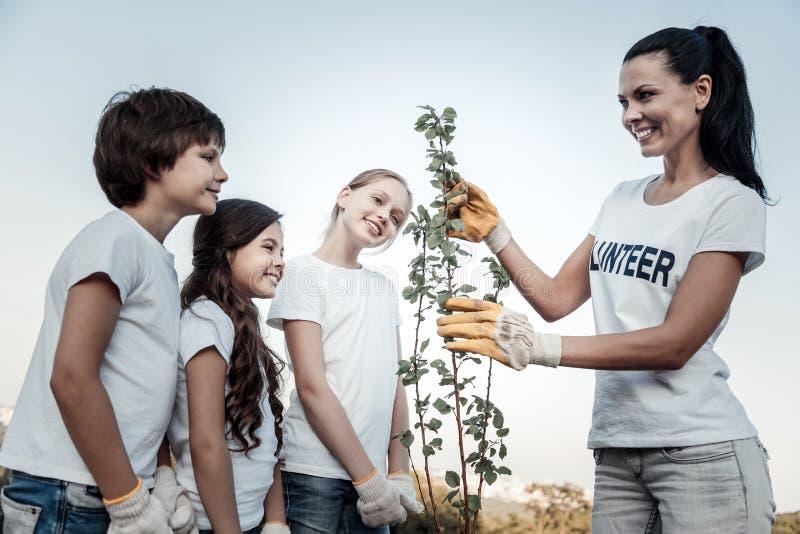 Радостные положительные дети смотря дерево стоковые изображения