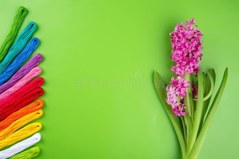 Радуга вышивки красит зубочистку на зеленой предпосылке с розовым цветком весны Концепция для шить и вышивки, день 8-ое марта жен стоковые фотографии rf