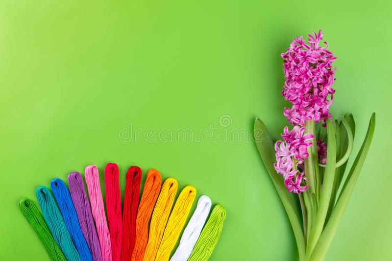 Радуга вышивки красит зубочистку на зеленой предпосылке с розовым цветком весны Концепция для шить и вышивки, день 8-ое марта жен стоковое фото