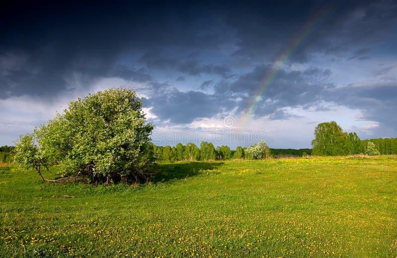 Download радуга стоковое изображение. изображение насчитывающей brampton - 489255