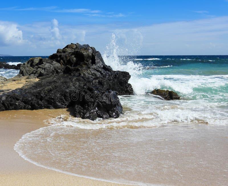 Разбивая волна, залив Oneloa, западный Мауи, Гаваи стоковые фотографии rf