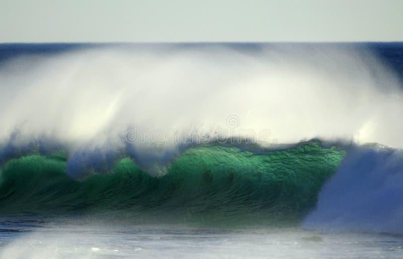 разбивая волна океана Тихая океан стоковые фотографии rf