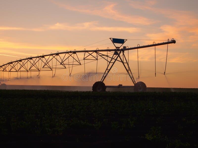 Разбивочная оросительная система оси в поле фермы на заходе солнца стоковое изображение rf