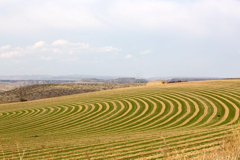 Разбивочной ферма орошенная осью стоковая фотография