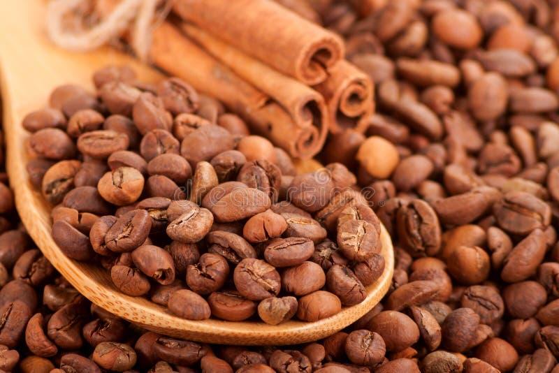 Разбрасывать кофейных зерен и ручек циннамона. стоковое фото rf
