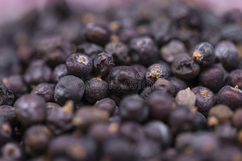 Разбросанные ягоды можжевельника стоковые изображения rf