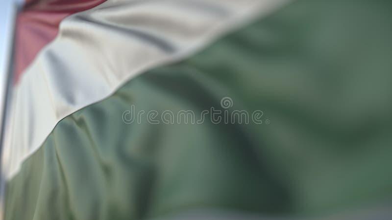 Развевая флаг Венгрии, мелкого конца-вверх фокуса Реалистический перевод 3D бесплатная иллюстрация