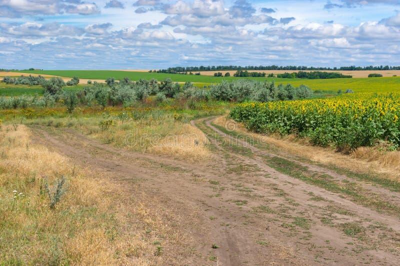 Разветвленная дорога земли через луг лета около города Dnipro стоковое изображение rf