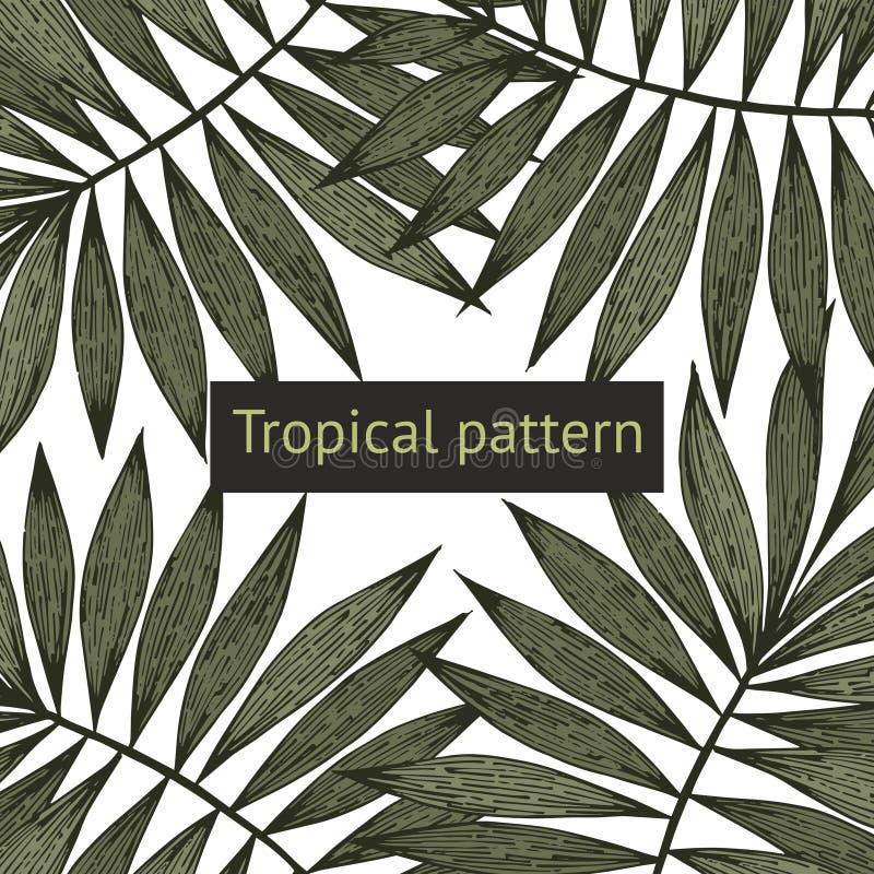 разветвляет тропическо Предпосылка вектора для продажи бесплатная иллюстрация
