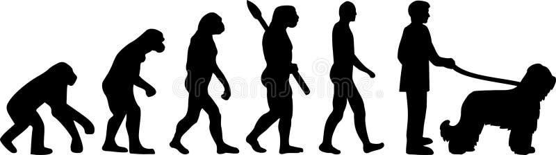 Развитие Briard эволюционировать иллюстрация штока