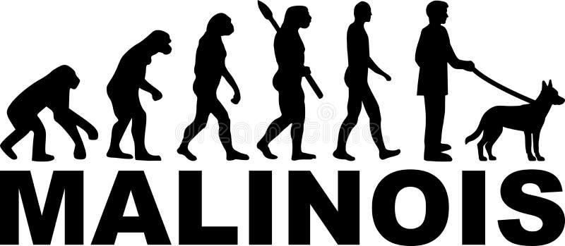 Развитие Malinois с именем бесплатная иллюстрация